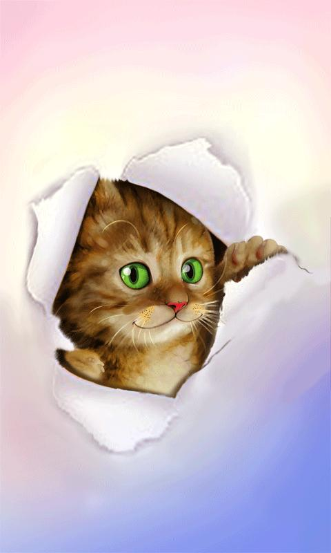 Moving Cat Wallpapers