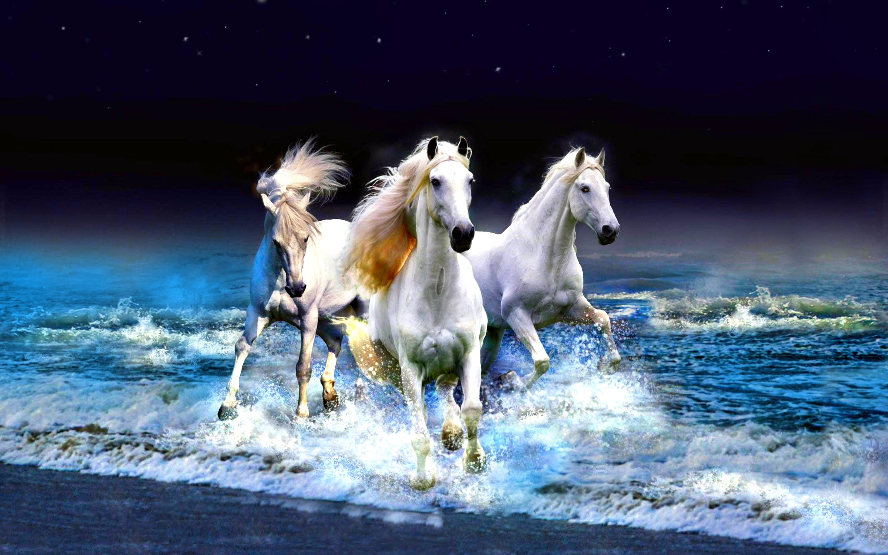 Moving Horse Wallpapers