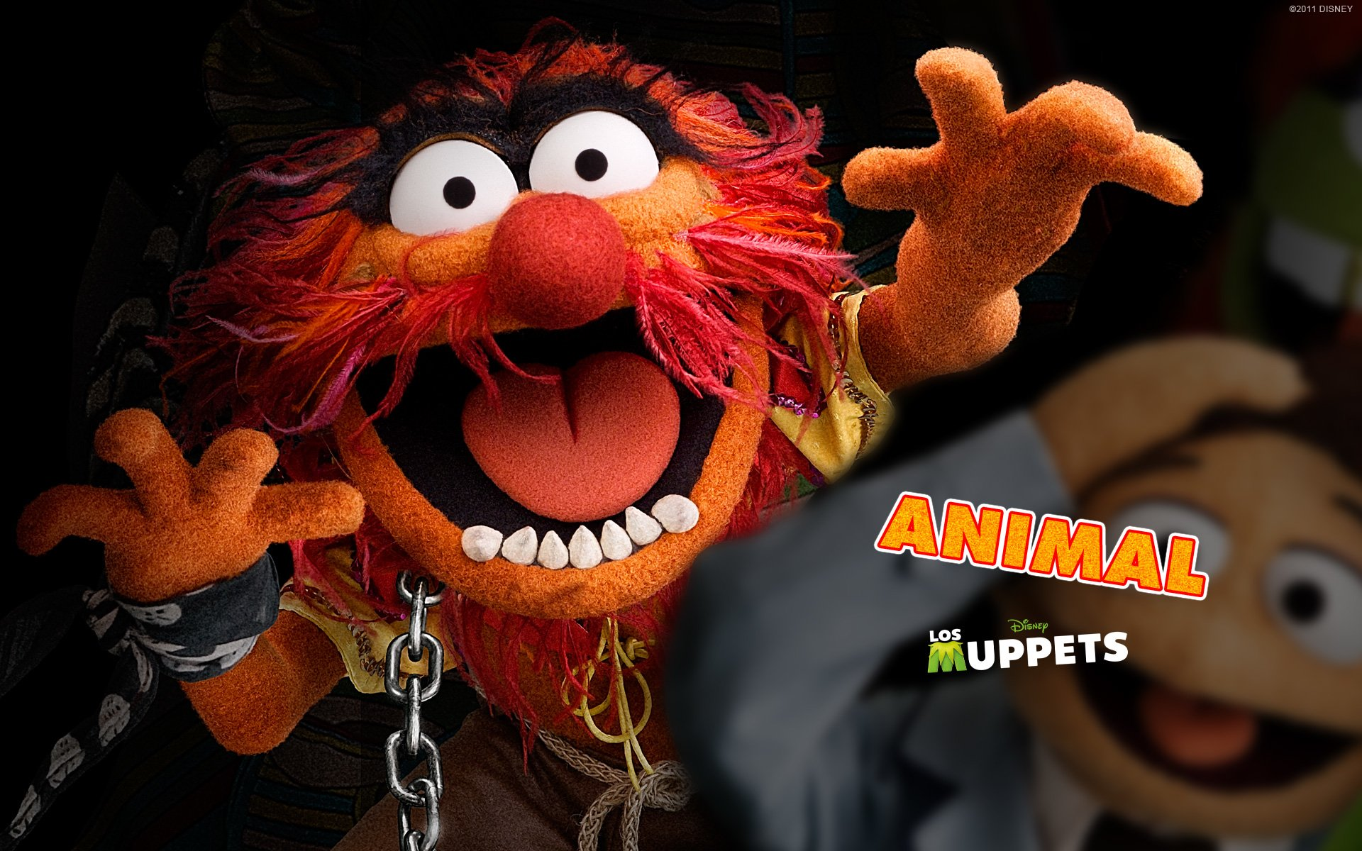 Muppet Wallpaper