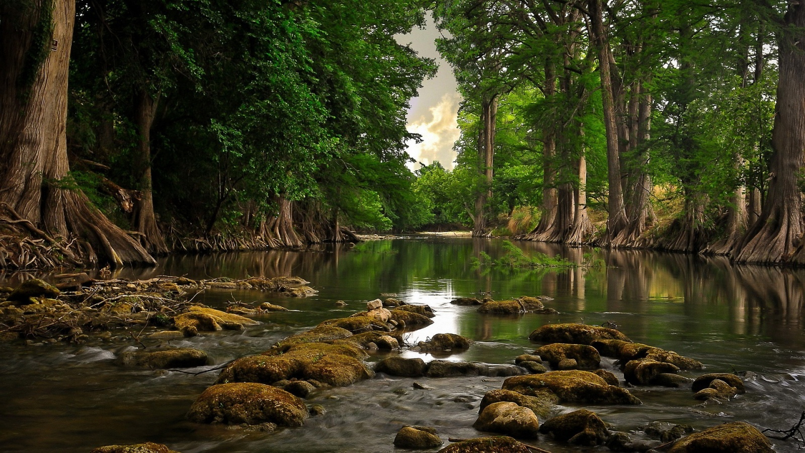 Download Nature HD Wallpapers 1600x900 Gallery