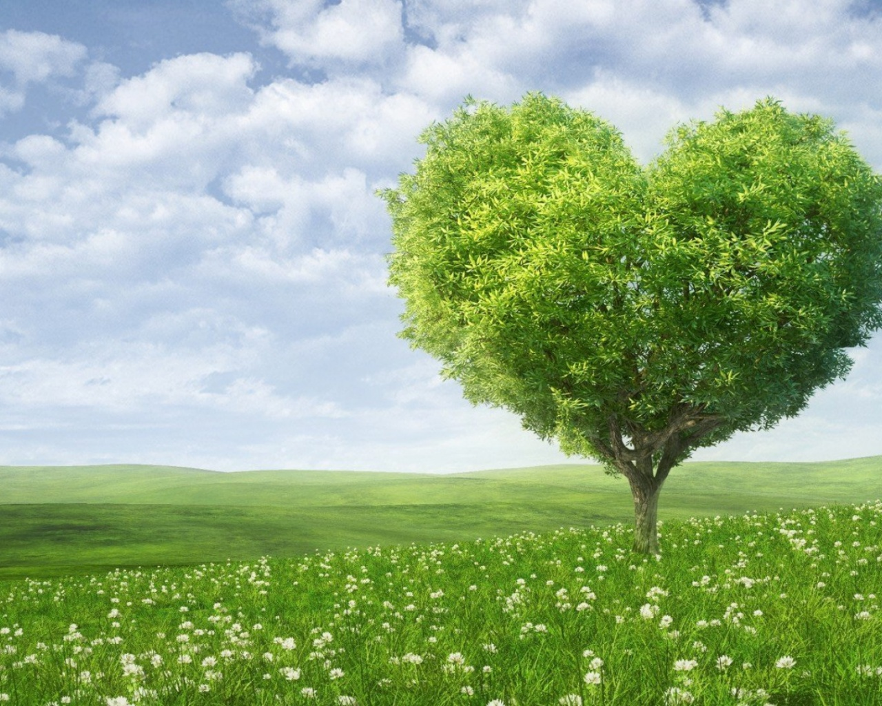 Nature Heart Wallpaper