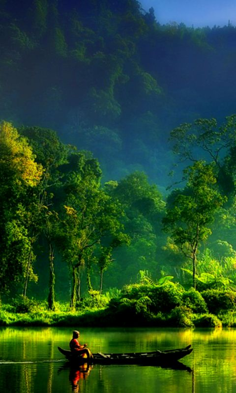 Nature Wallpaper 480x800