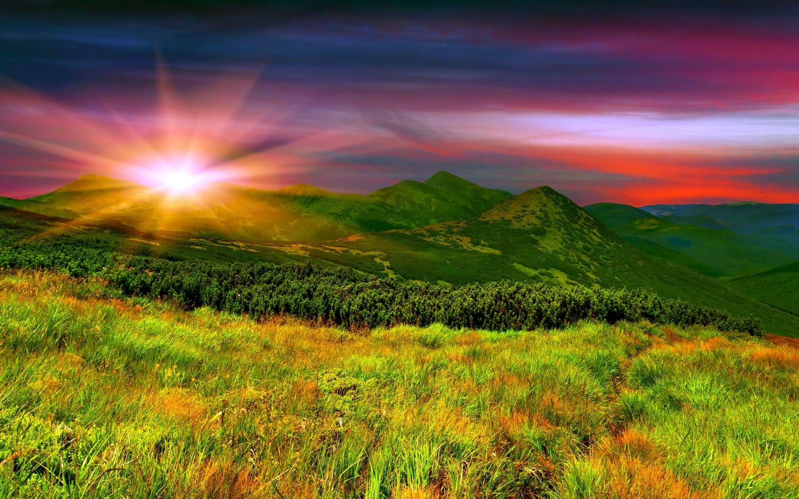 Nature Wallpaper Collection