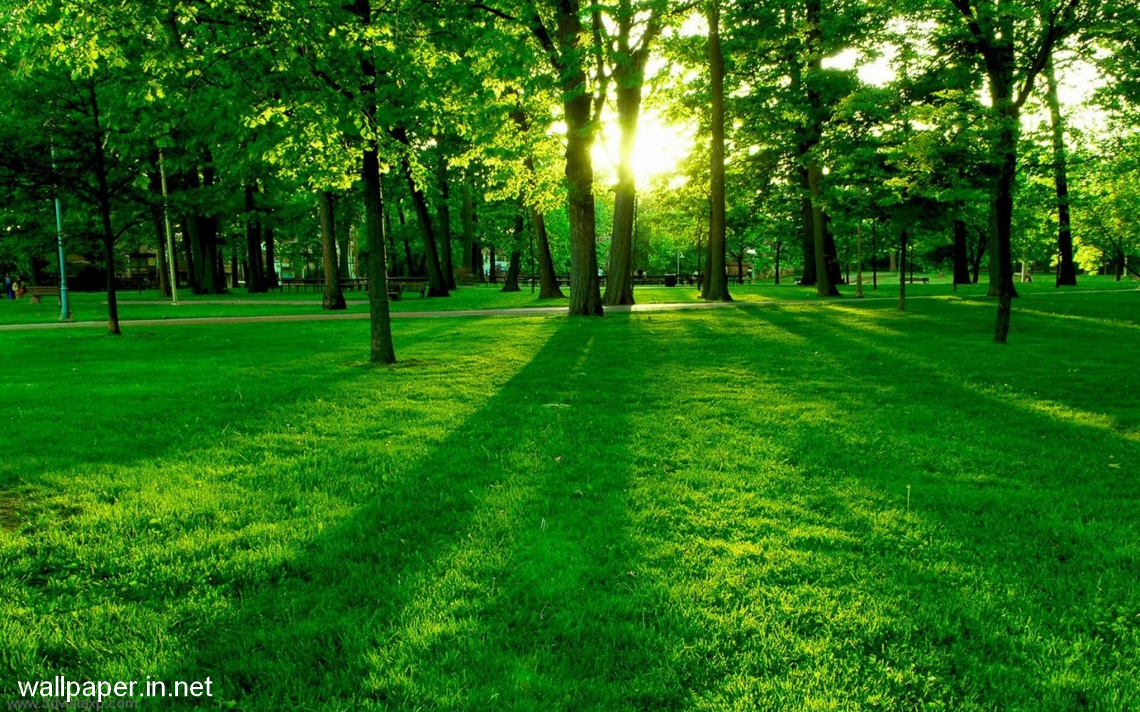 Nature Wallpaper For Laptop Free Download