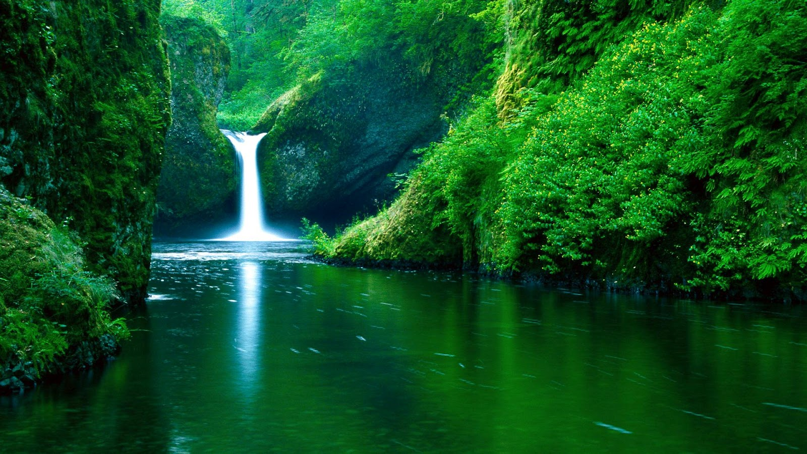 Nature Wallpaper For Laptop HD