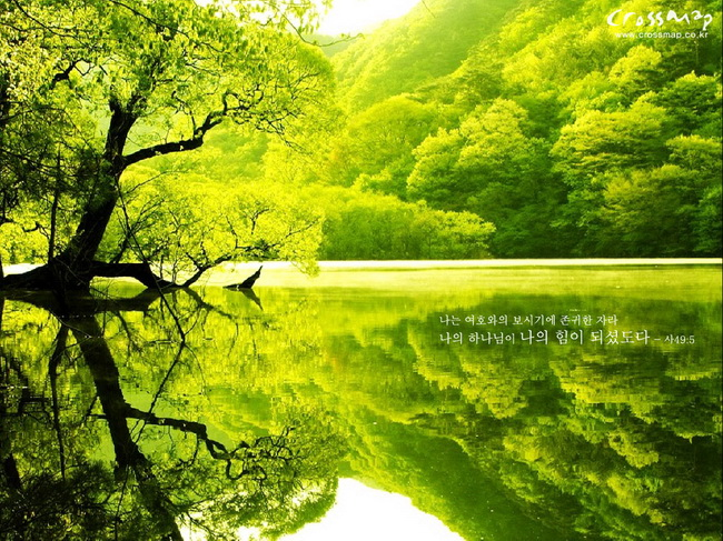 Nature Wallpaper High Resolution Free Download