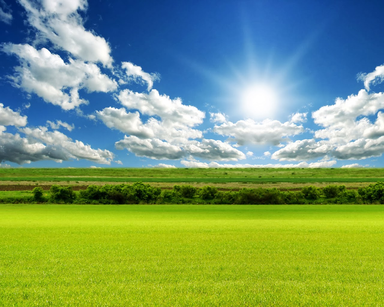 Nature Wallpapers Free Download For Pc