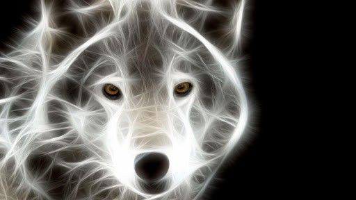 Neon Animal Wallpapers: Download Neon Animal Wallpapers Gallery