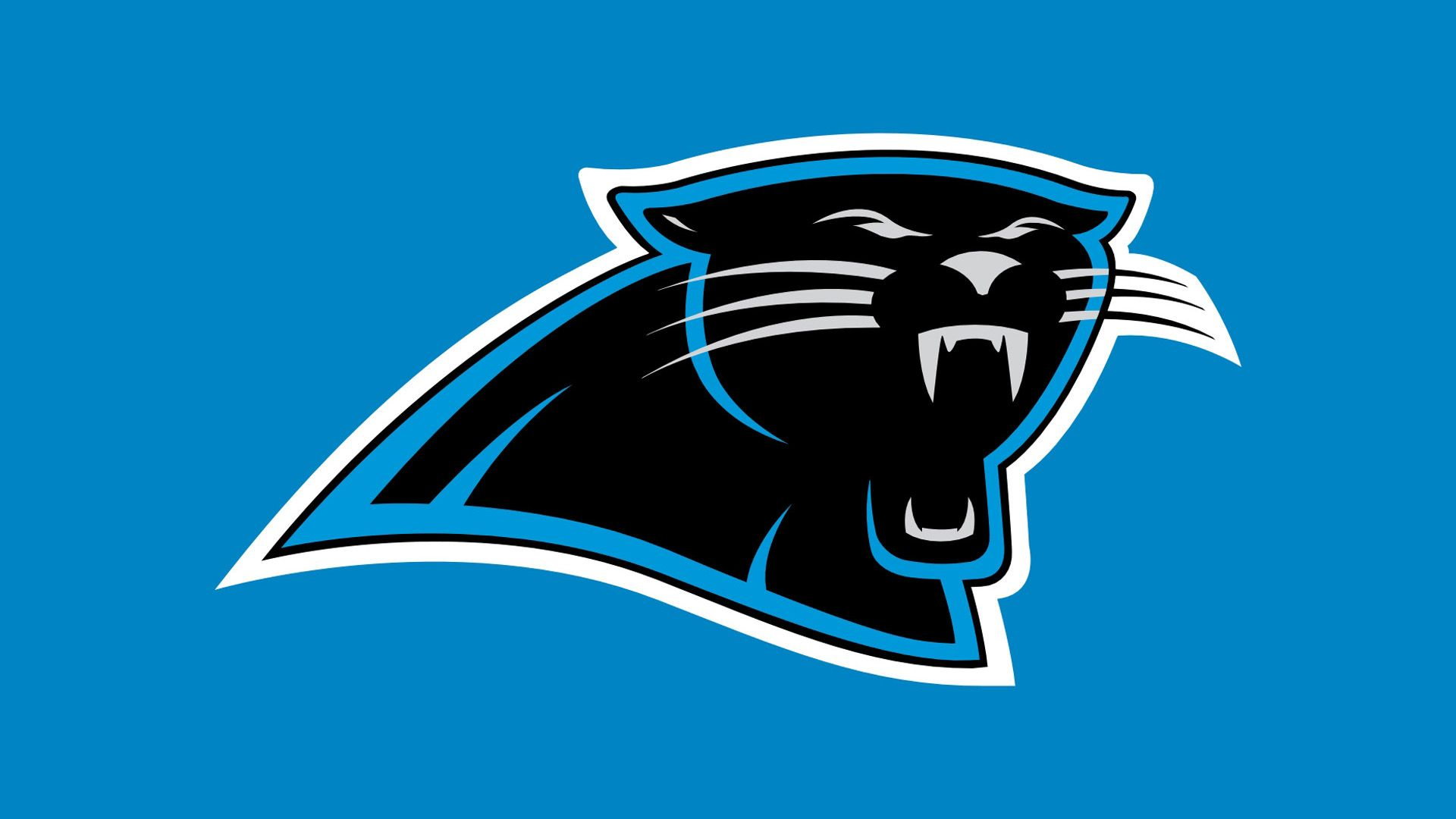 Nfl Panthers Wallpaper