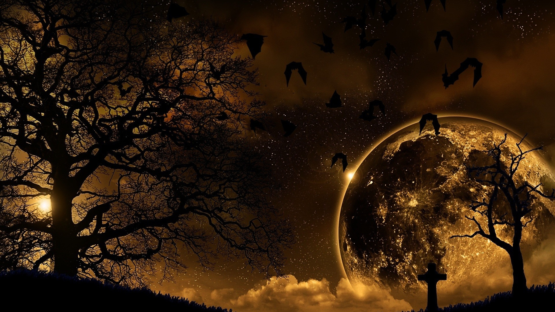 Download Night Nature Hd Wallpapers Gallery