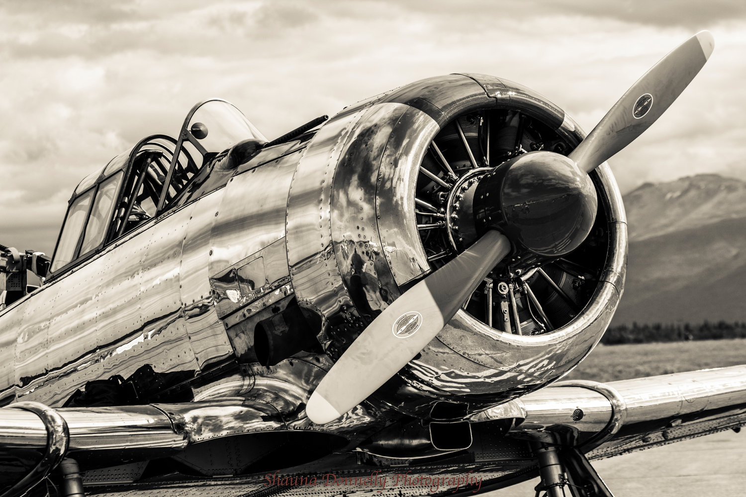 airplane aircraft airplanes planes aviation air plane engine wallpapers desktop classic propeller buzzerg frame cool avion flights paint phone radial