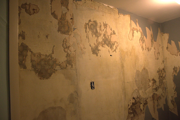 Old Wallpaper Removal