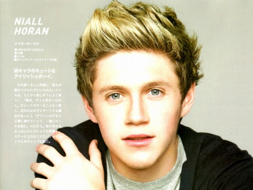 One Direction Niall Wallpaper