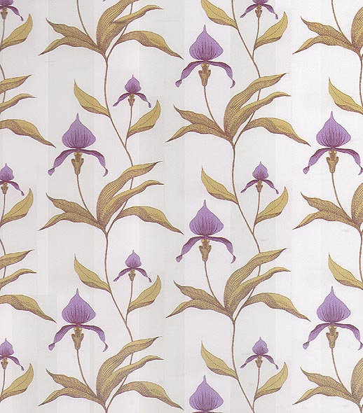 Orchid Wallpaper Designs
