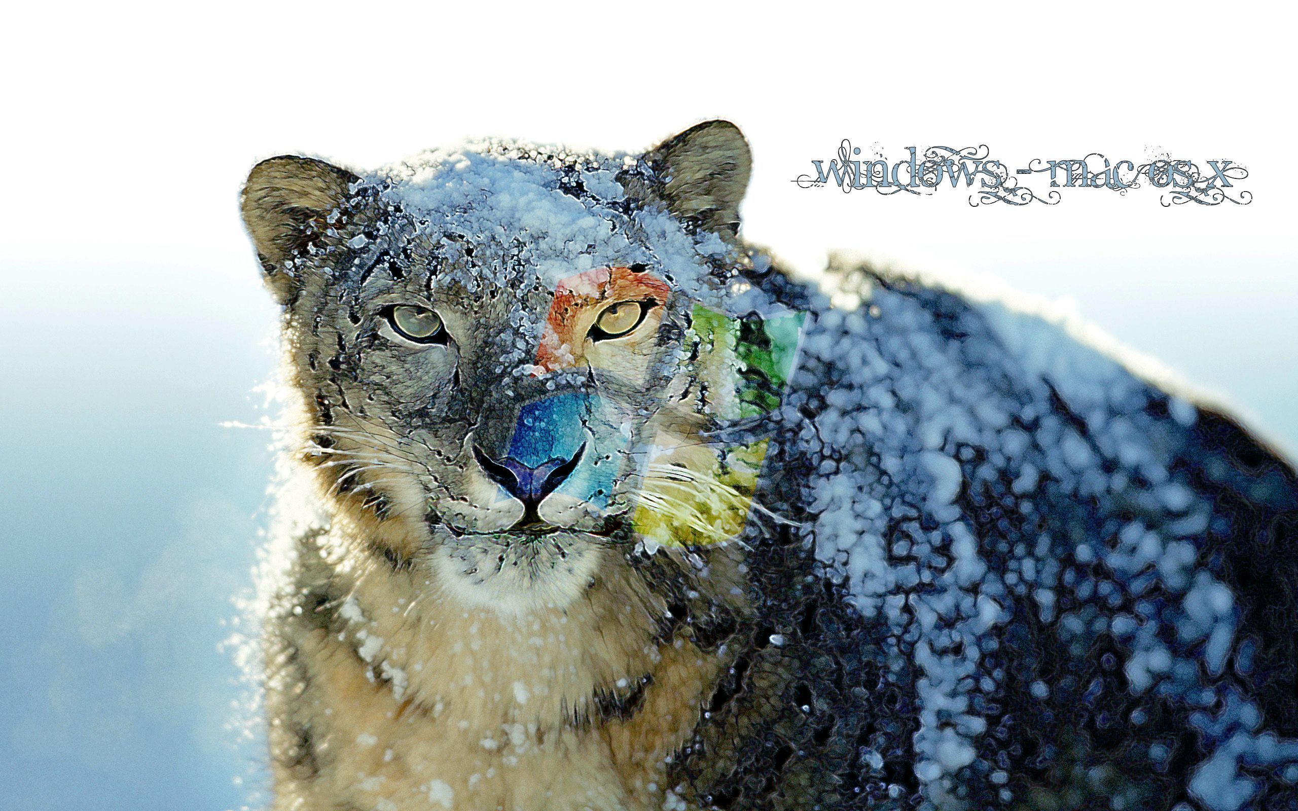 Os X Snow Leopard Wallpaper