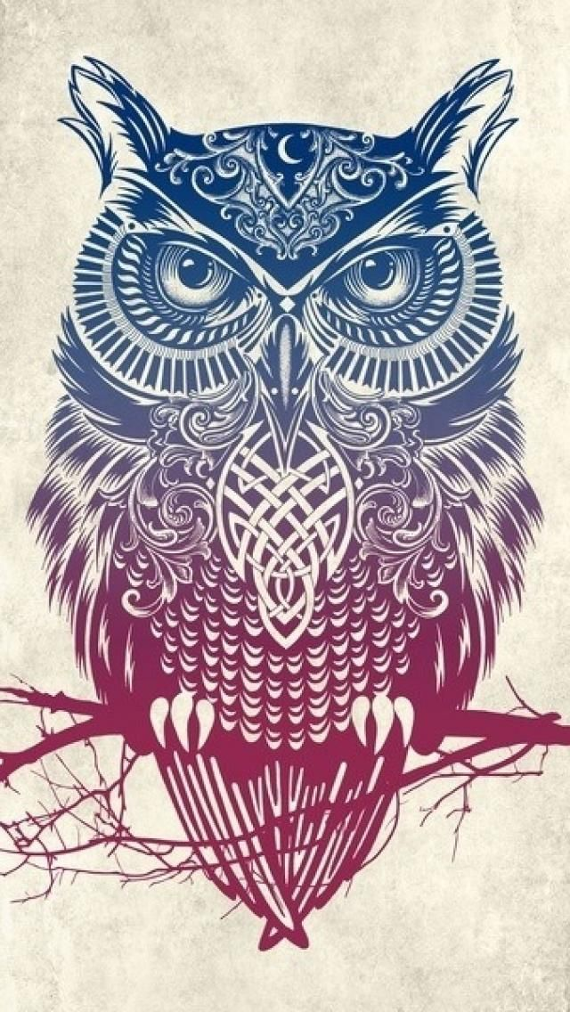 Owl Iphone Wallpaper