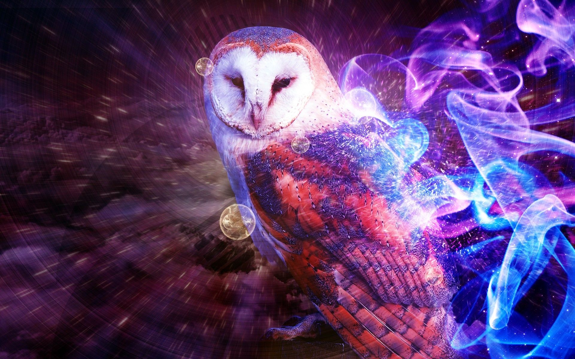 Owls Wallpaper