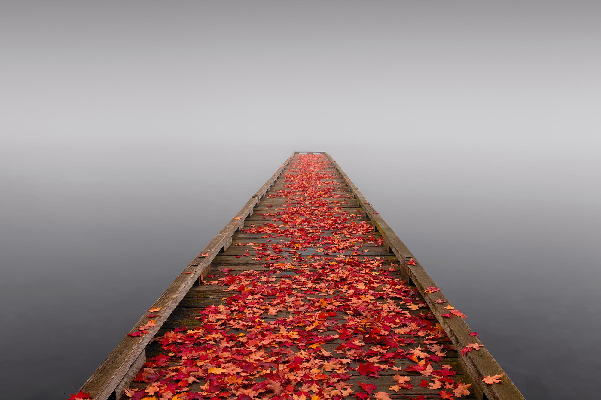 Peter Lik Wallpaper