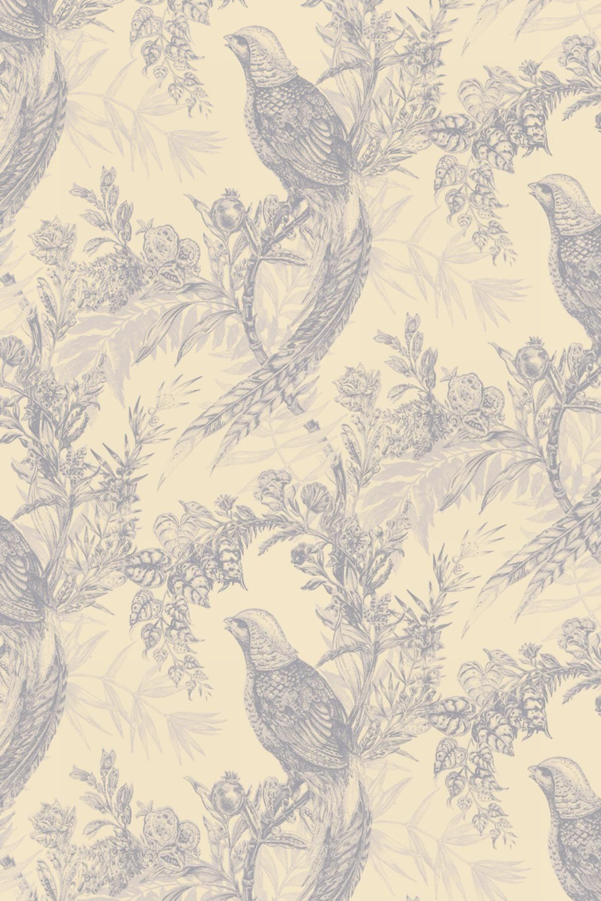 Pheasant Wallpaper For Home