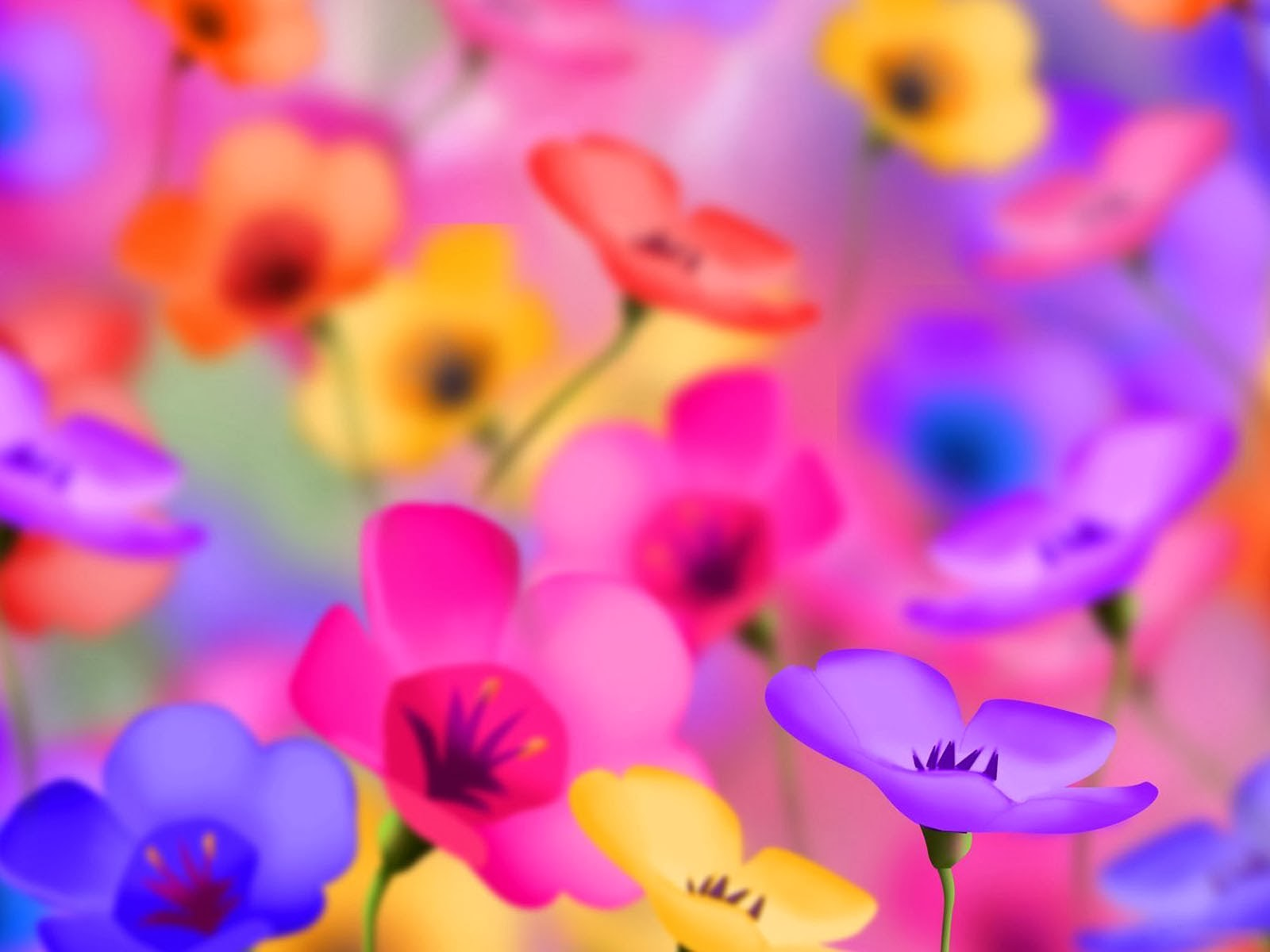 Pictures Of Wallpapers Of Flowers