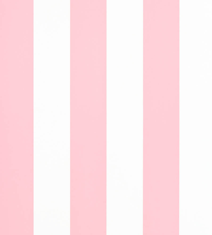 Pink &Amp; White Striped Wallpaper