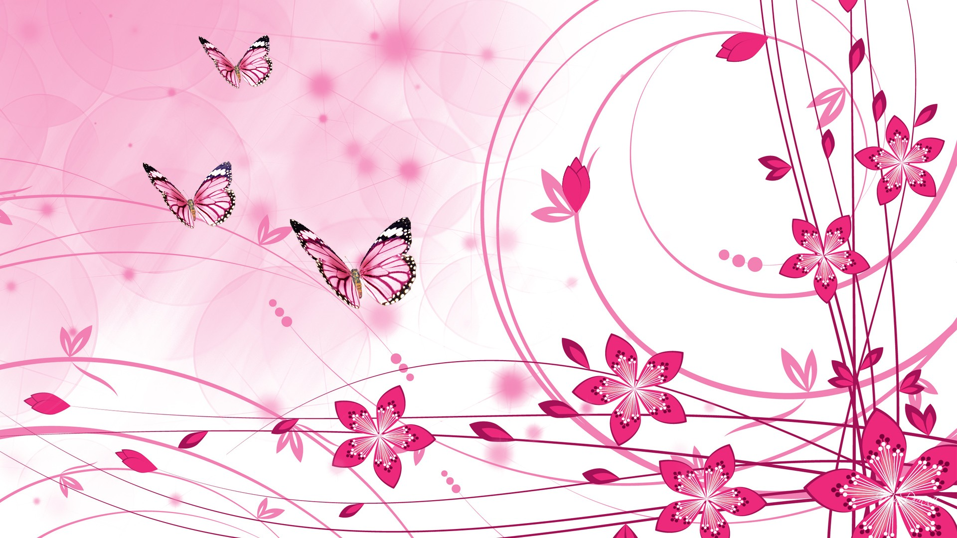 Pink Color Wallpapers HD