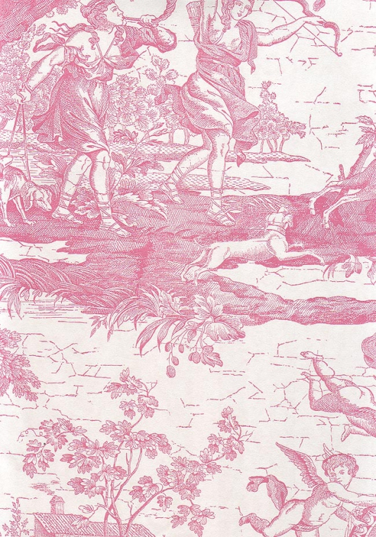 Download Pink Toile Wa...