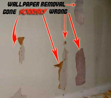 Professional Wallpaper Removal