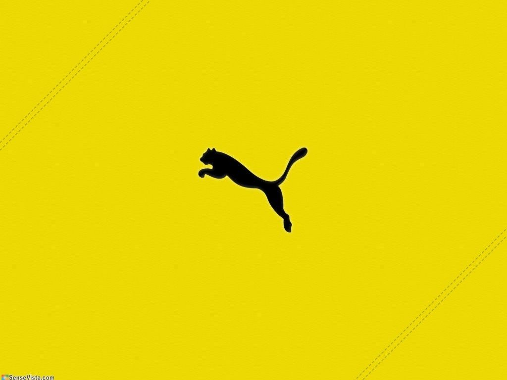 Puma Wallpaper Download