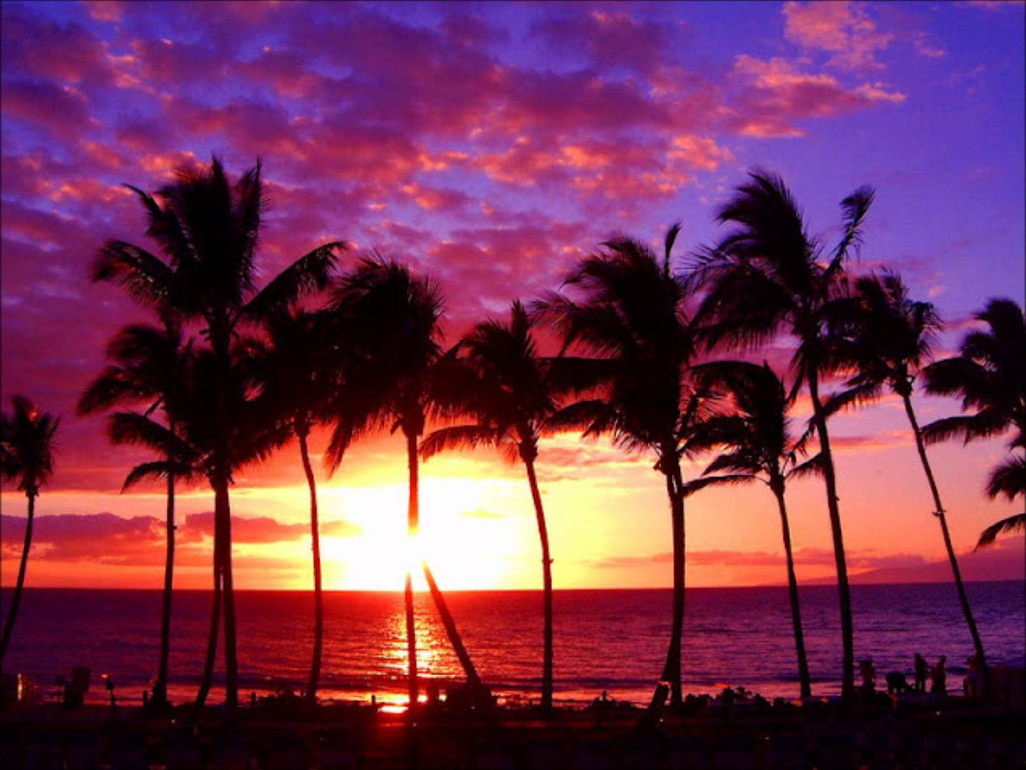 Purple Beach Sunset Wallpaper