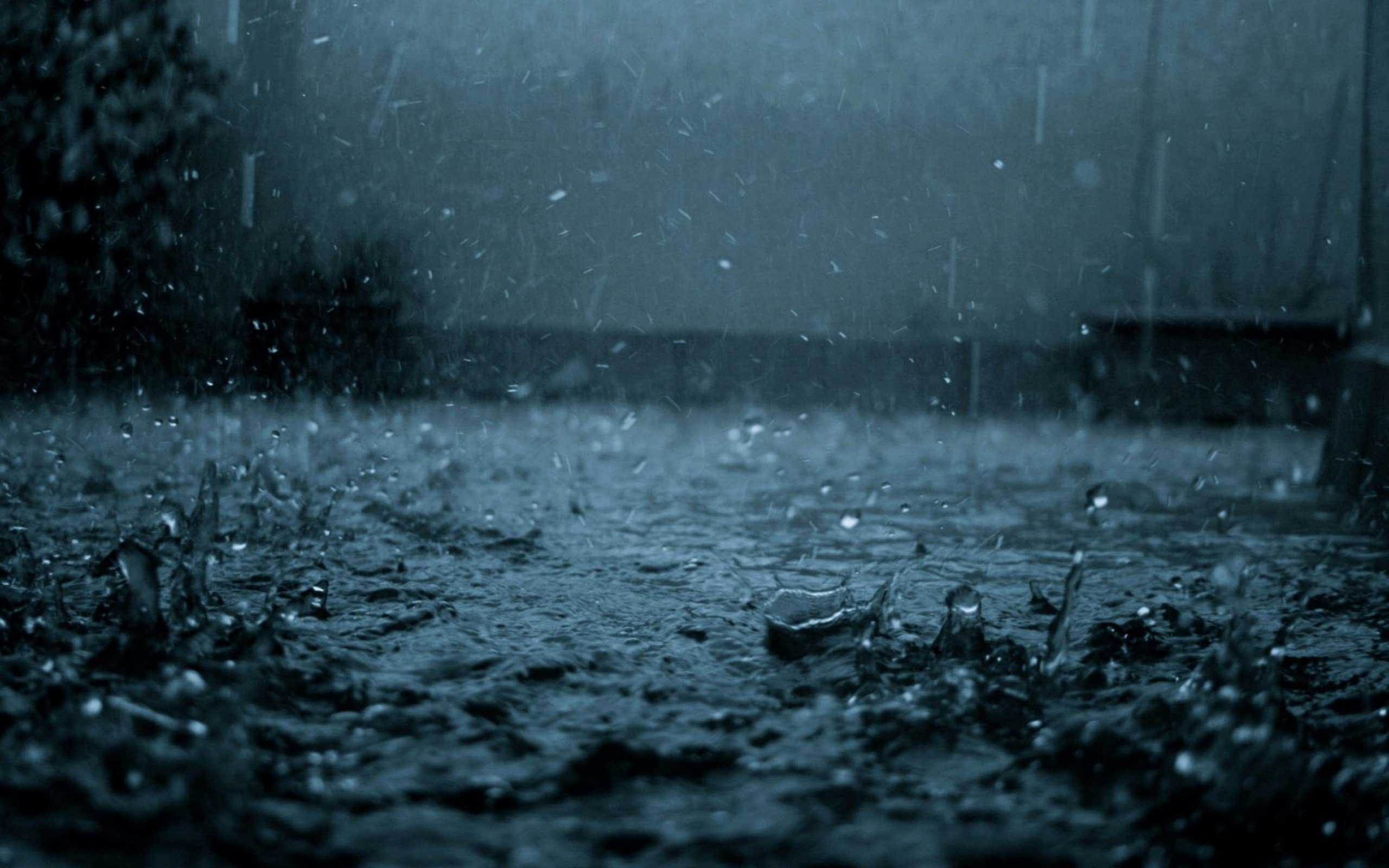 Rain Full HD Wallpaper