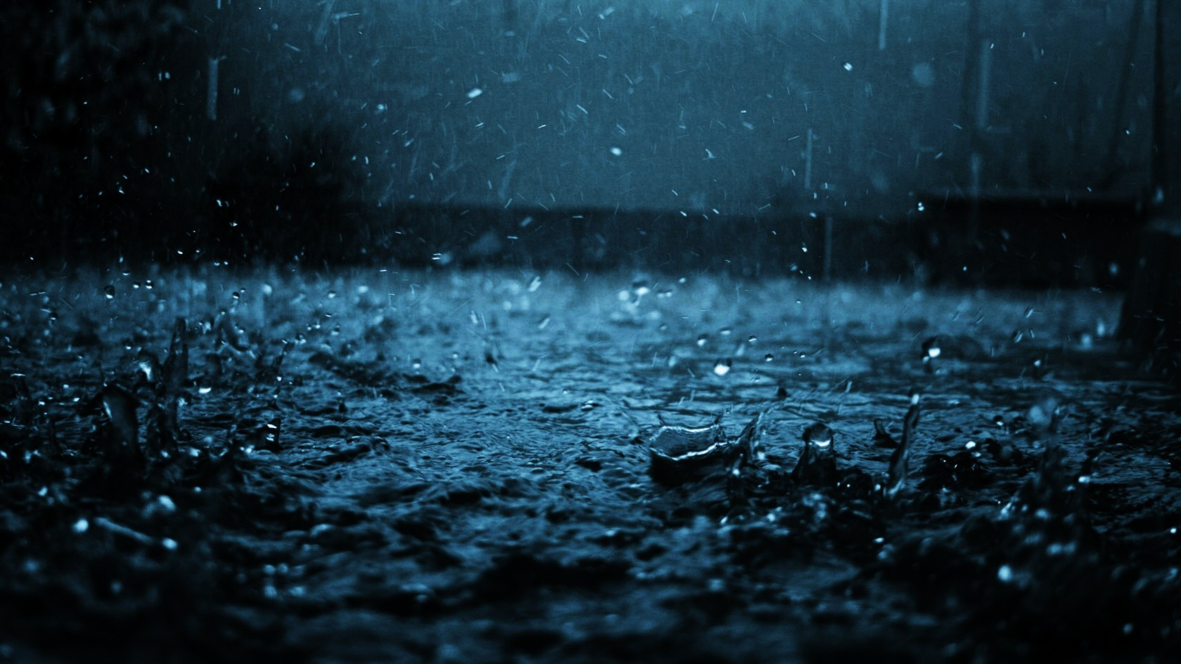 Rain Wallpaper Full HD