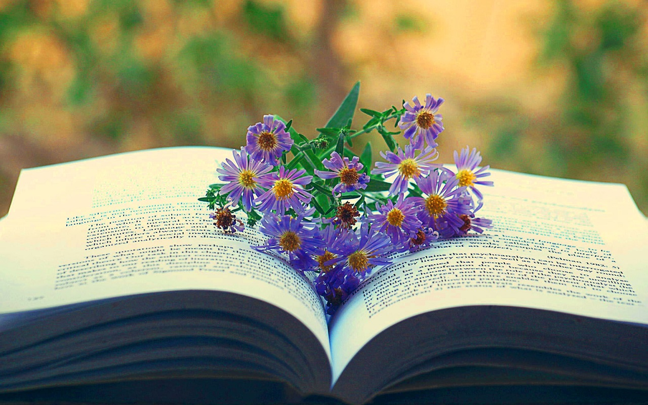 Download Reading Books Wallpaper Gallery
