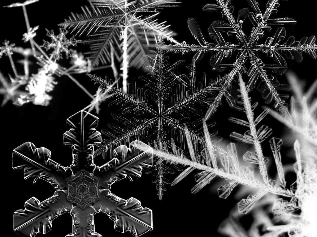 Real Snowflake Wallpaper