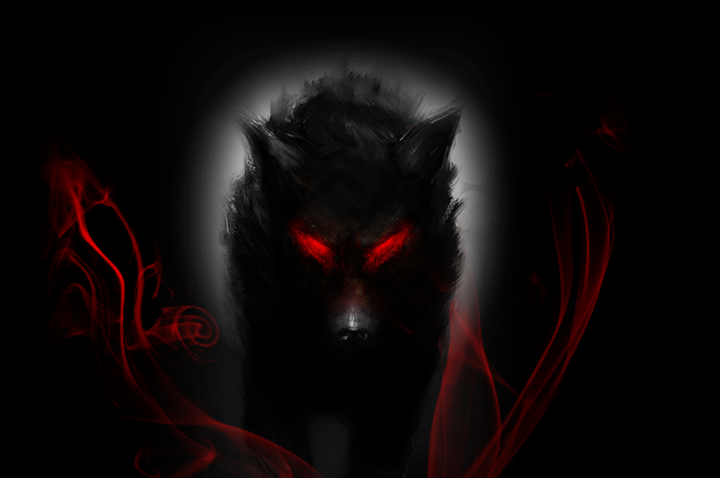 Red Wolf Wallpaper