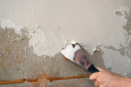 Removing Wallpaper From Plaster