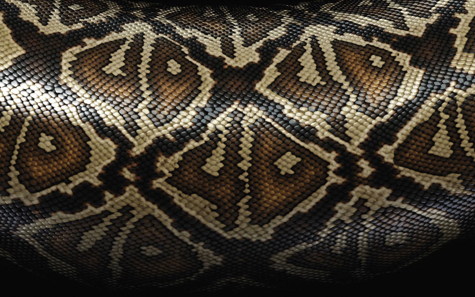 Reptile Skin Wallpaper