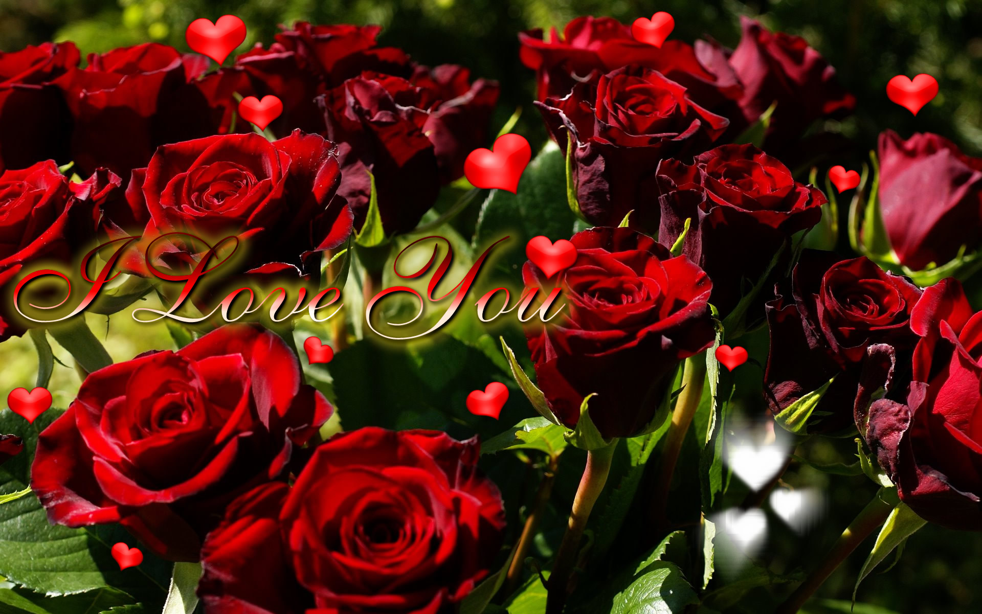 Rose I Love U Wallpaper