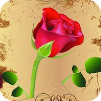 Rose Live Wallpaper Apk