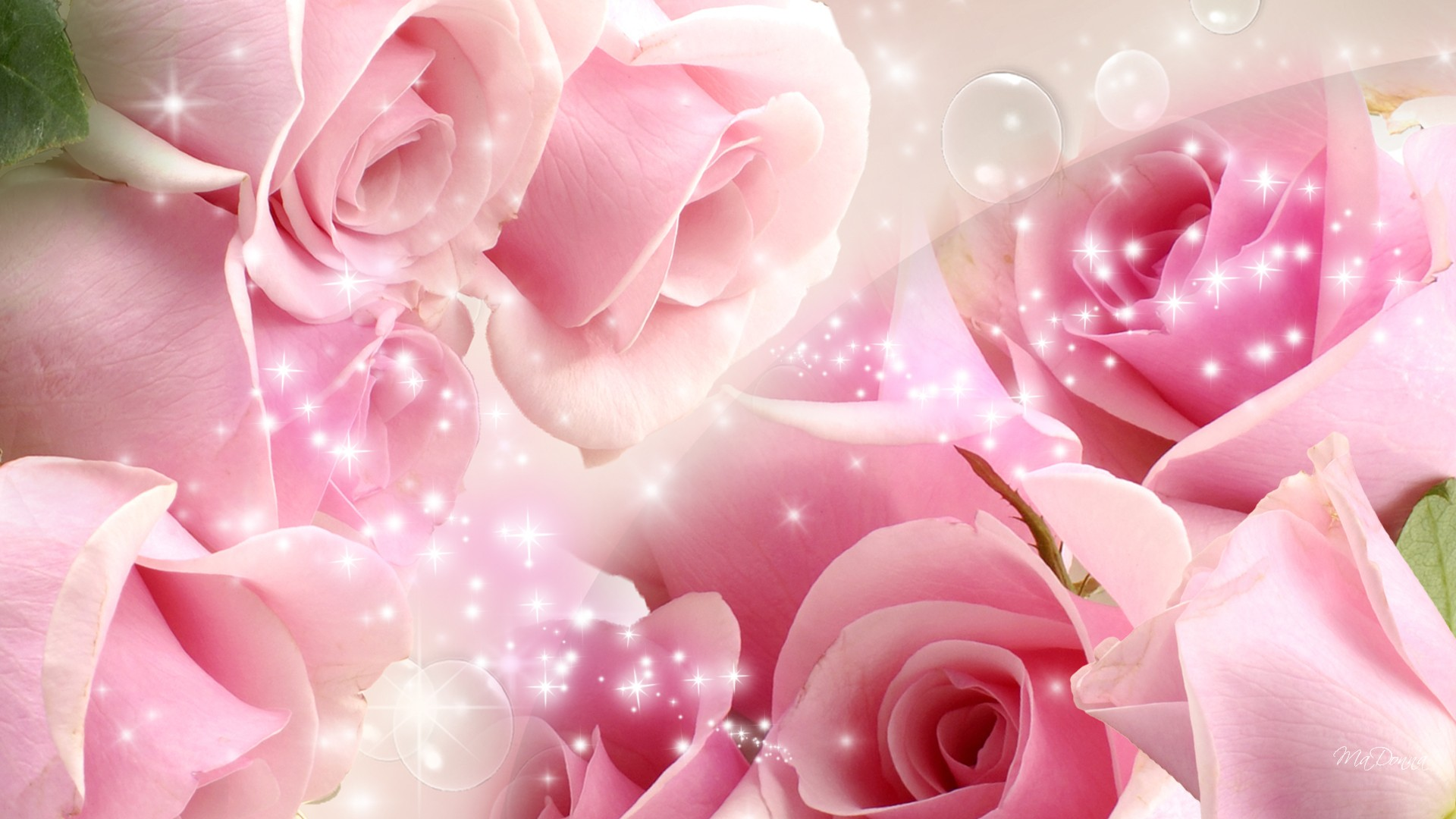 Download Pink Roses Background Wallpapers Gallery