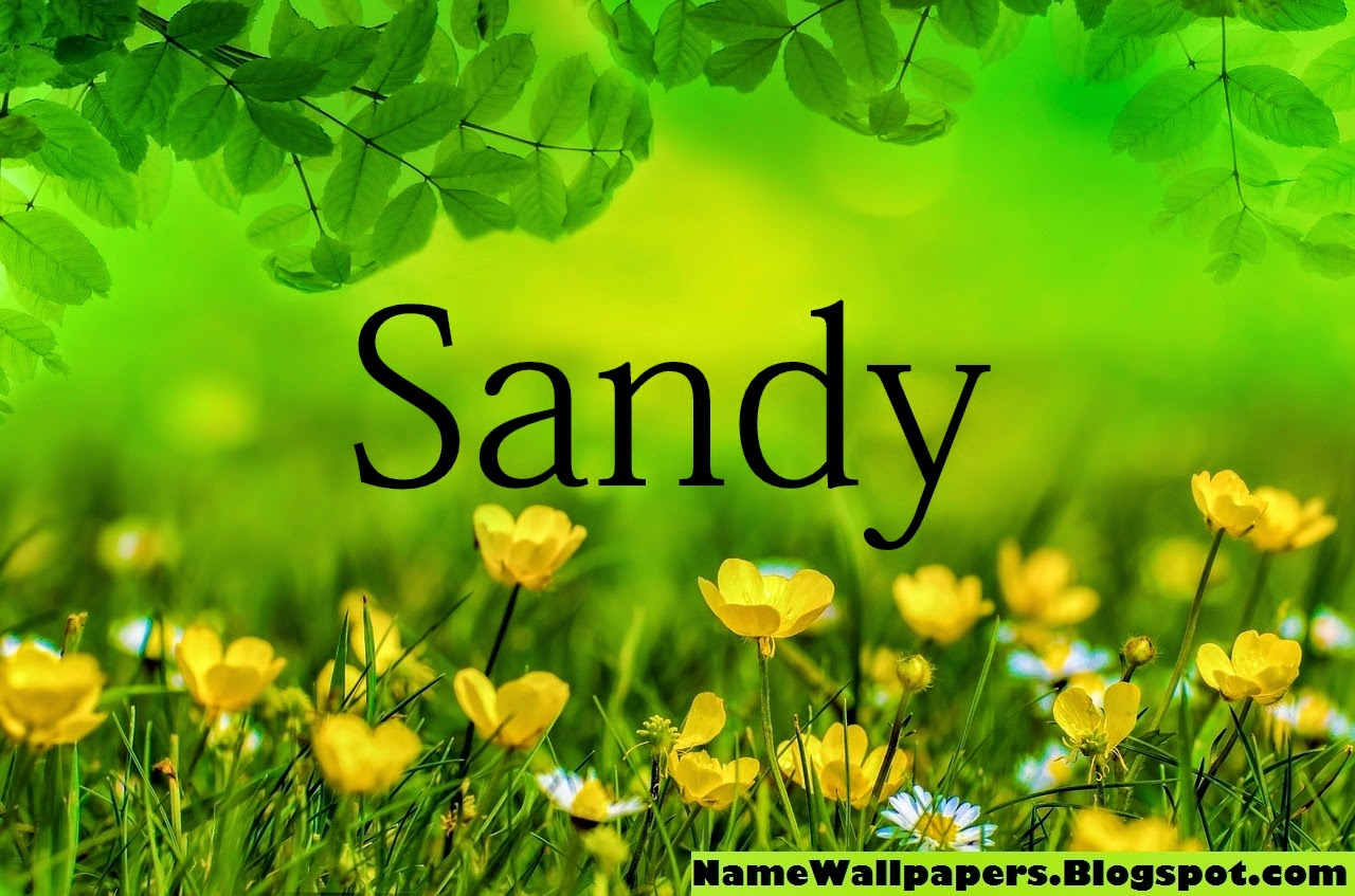 Sandy Name Wallpaper