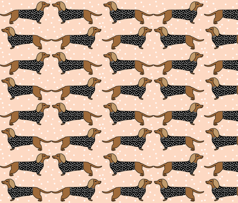 Sausage Dog Wallpaper