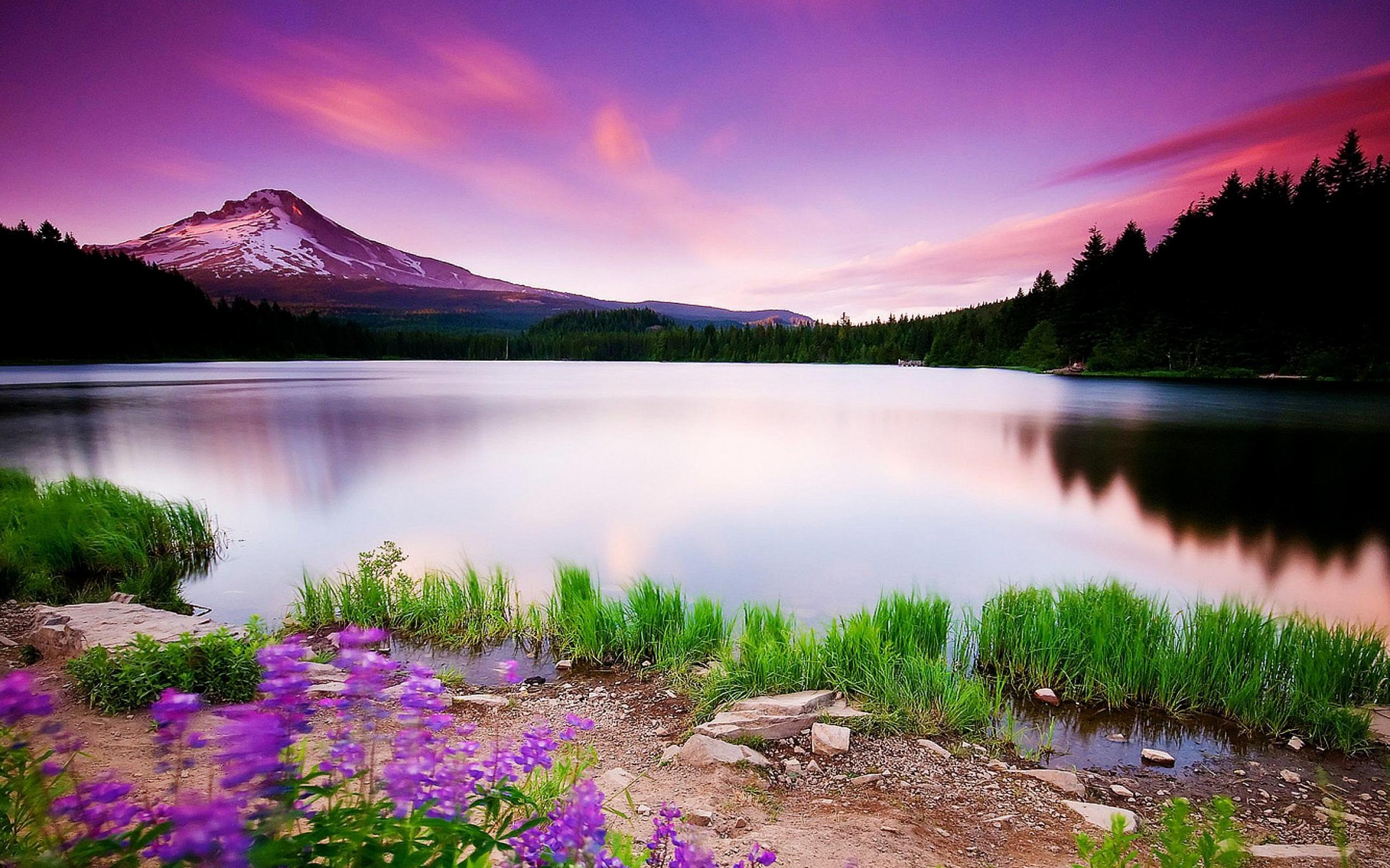 Sceneries Wallpapers Of Nature