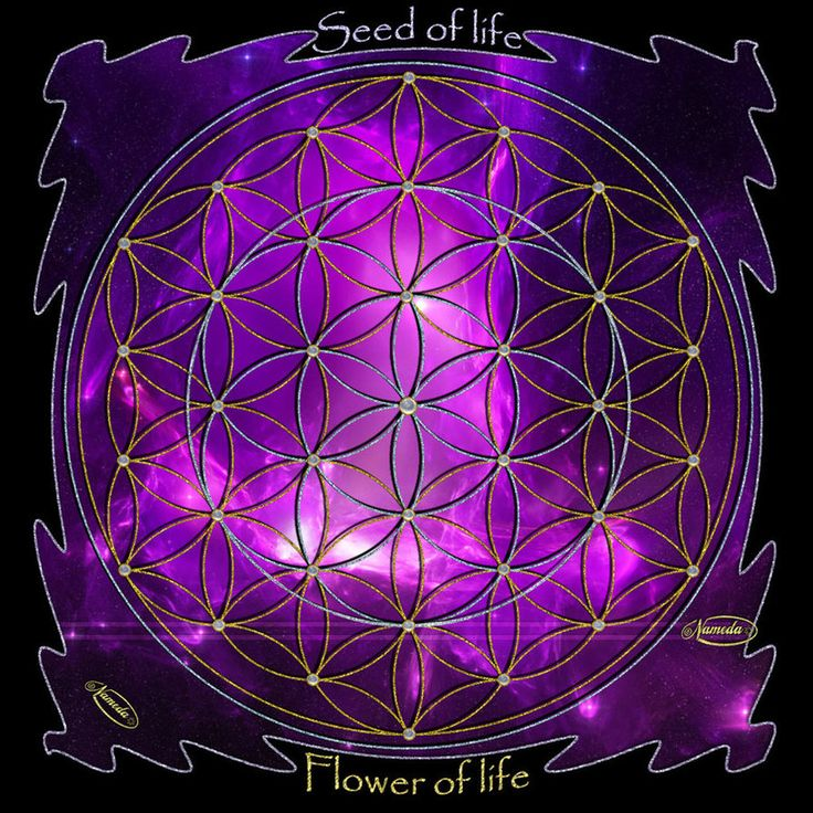 Seed Of Life Wallpaper