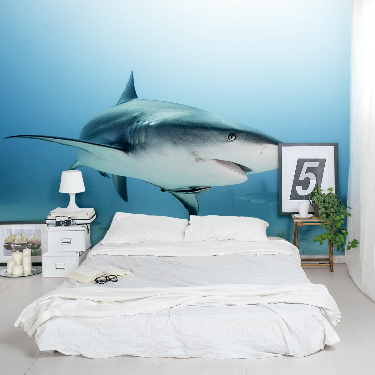 Shark Wallpaper For Walls