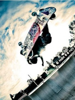 Skaters Wallpaper