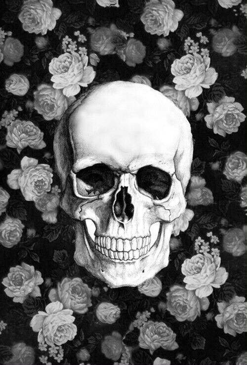 Skull Wallpaper Iphone