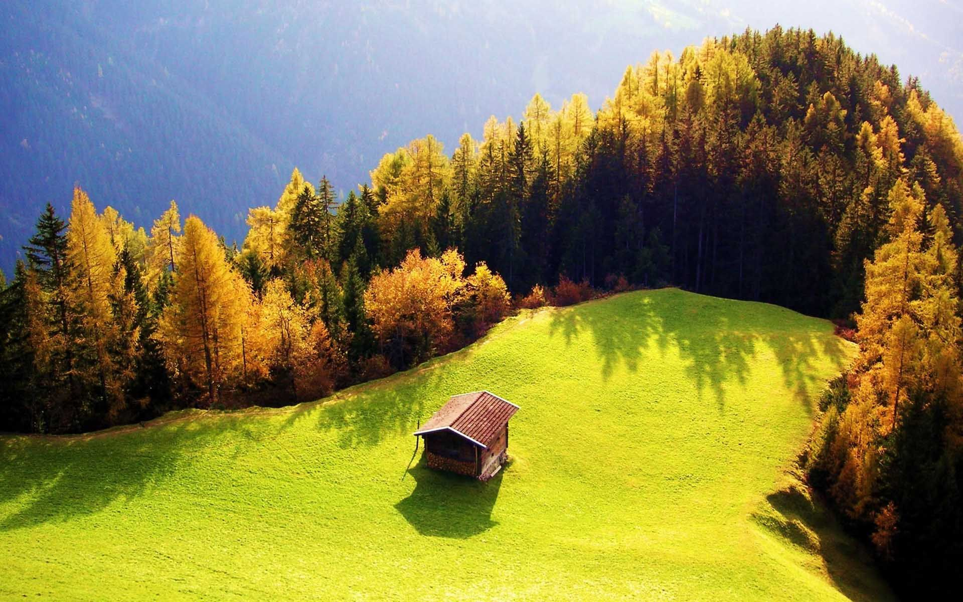 Small House Wallpaper