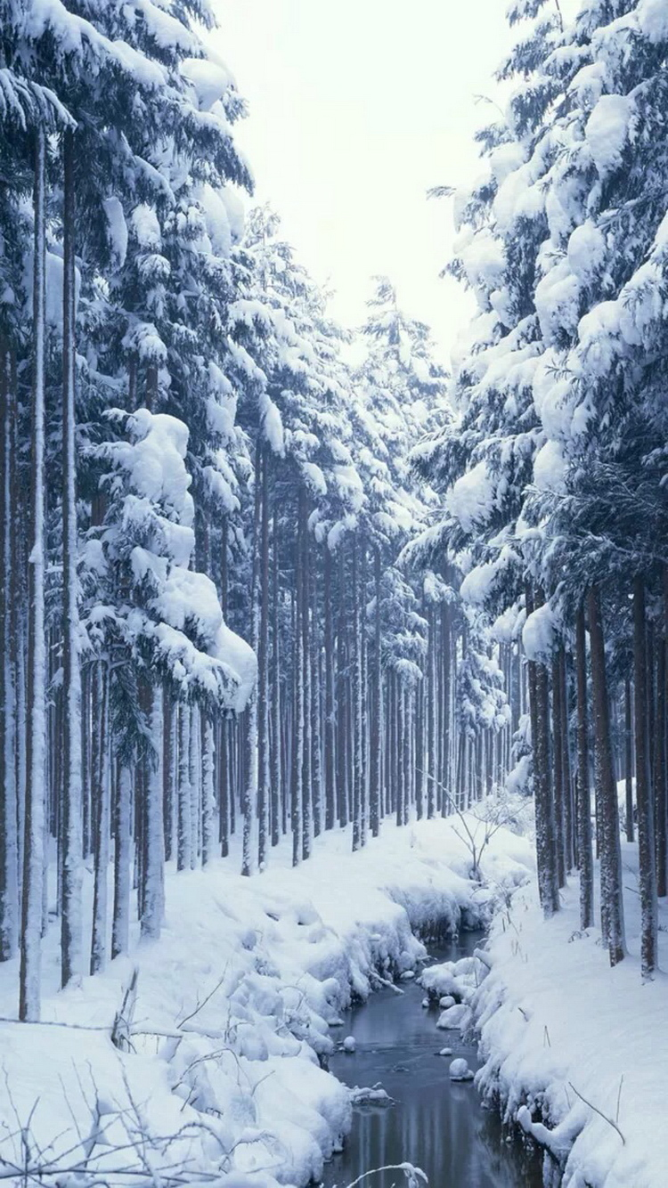 Snow Wallpaper For Iphone