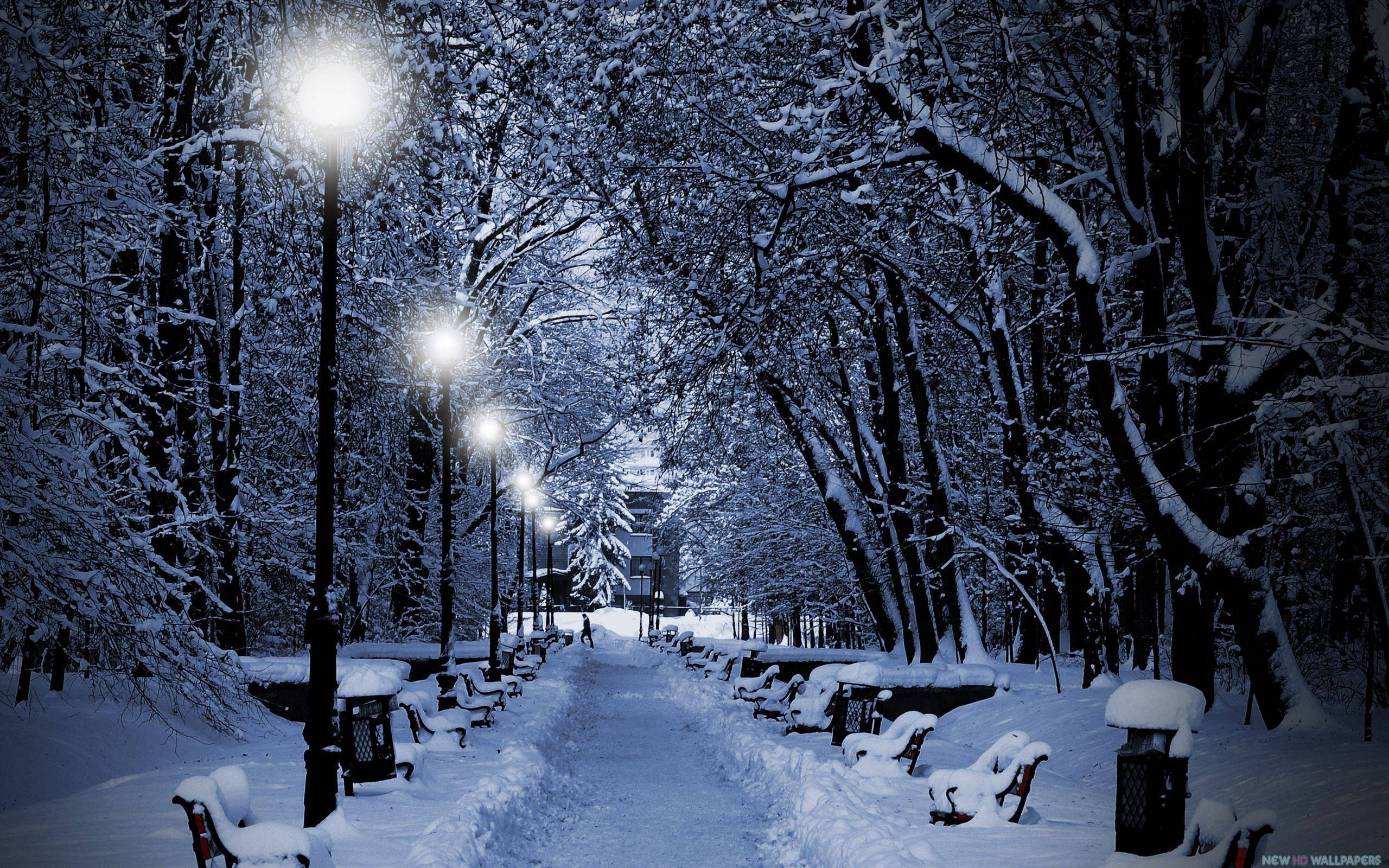 Snowy Night Wallpaper